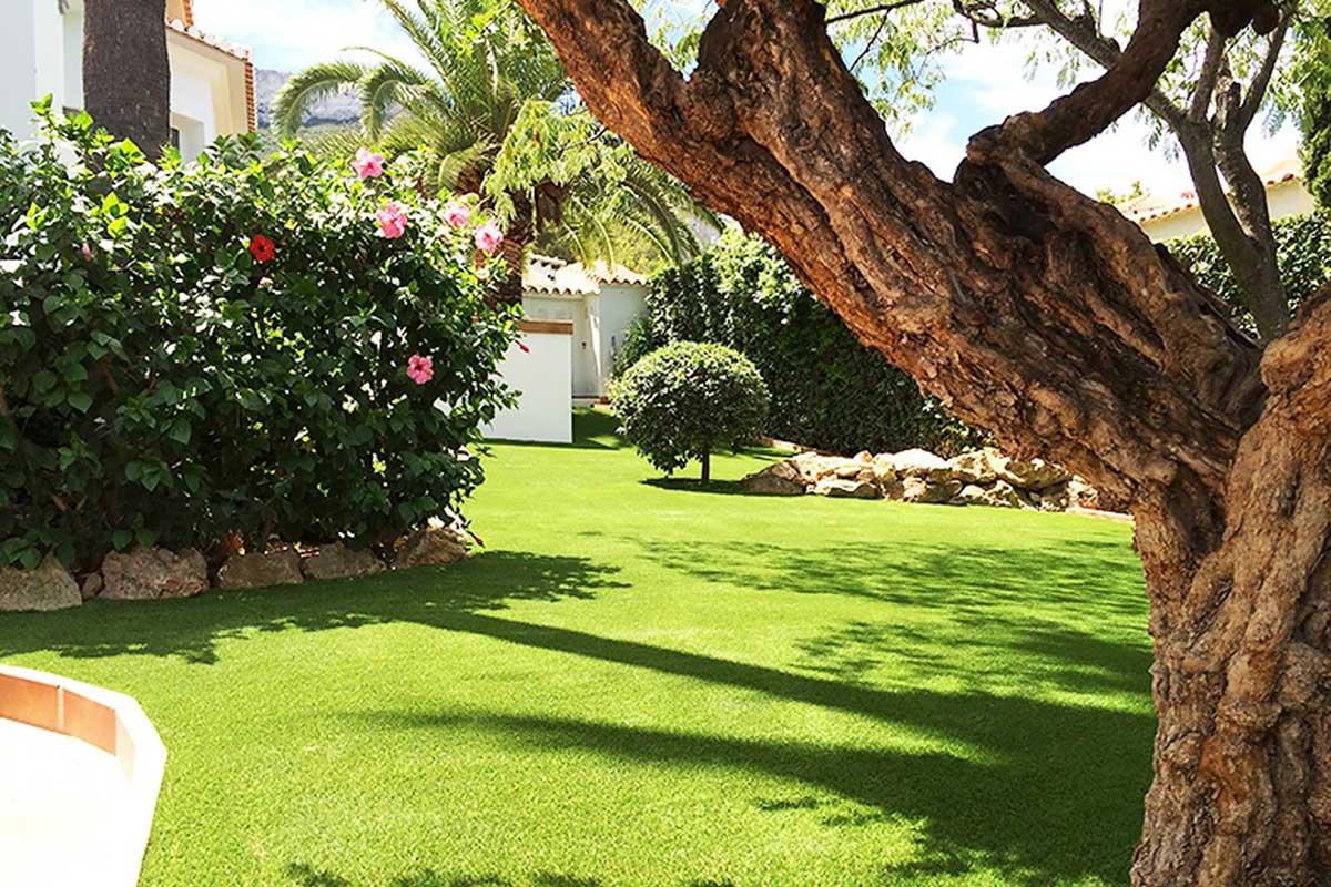 Sibari Grass landscaping