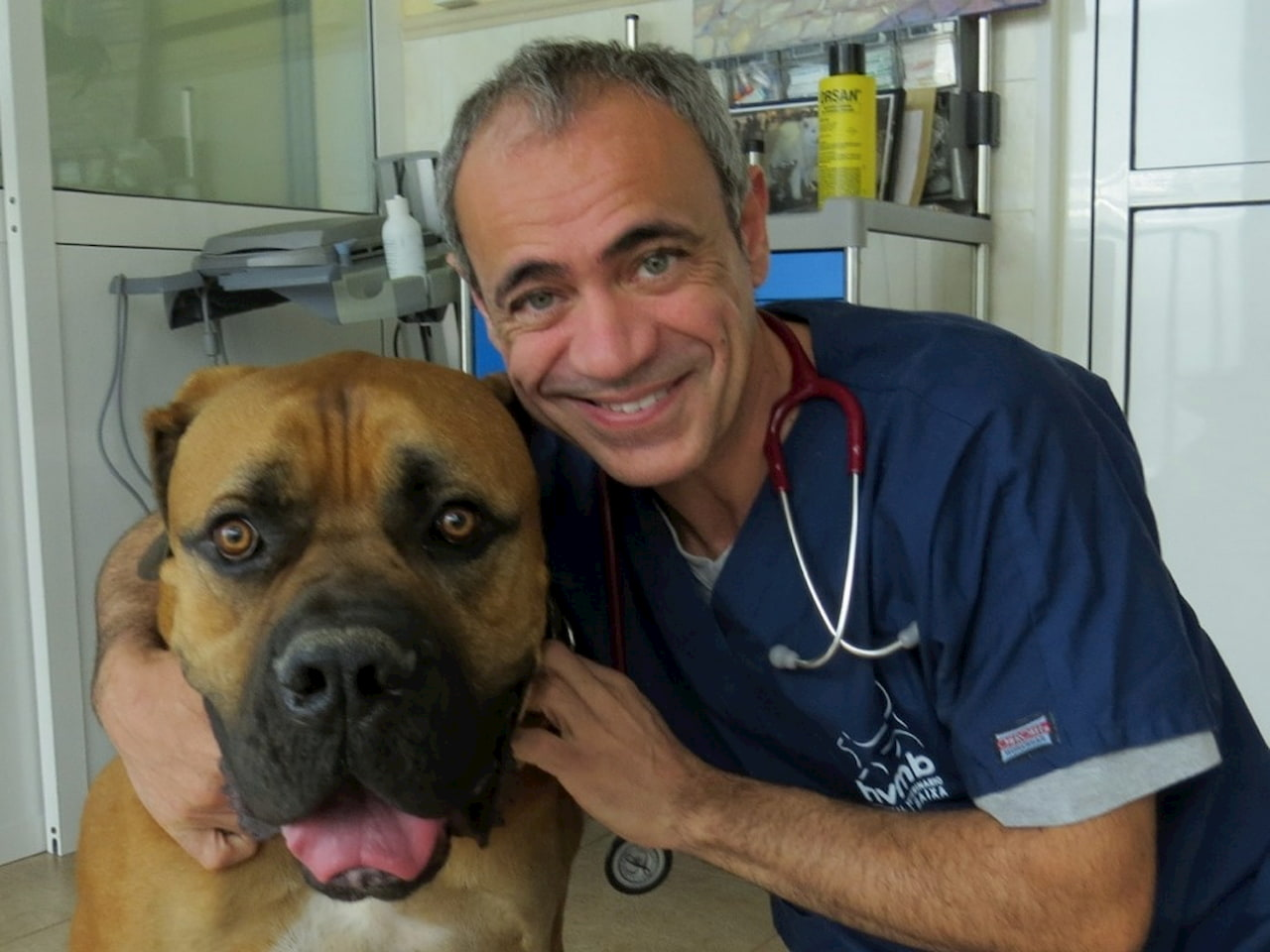 Interview with José Rial, expert veterinay