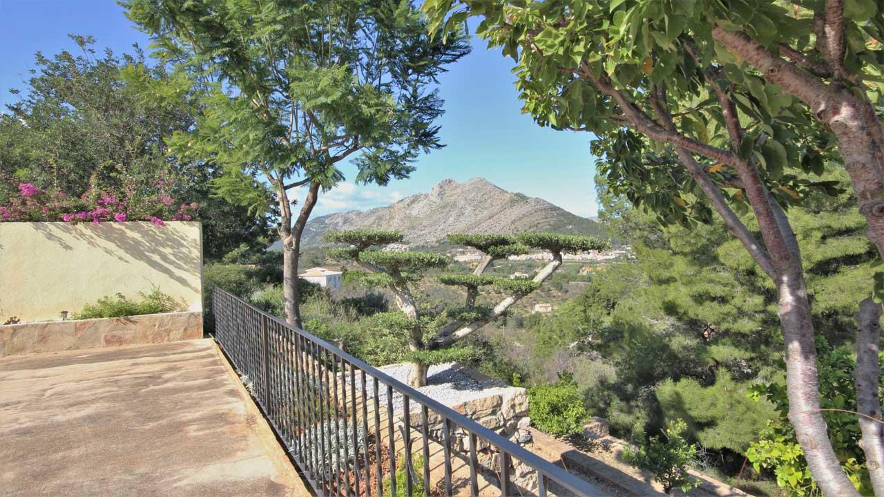 Jacaranda Spain, your real estate agency in Jalón Valley